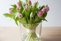 Time for Tulips / Broekhof material for tulips like bags, sheets, rolls, glass and many more!