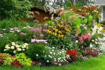 Le jardin malin / trucs et astuces des jardiniers malins