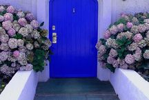beautiful doors and homes / by Anabela Antunes