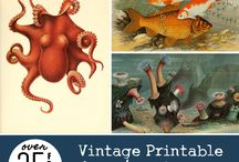 Art & Printables
