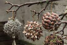 prirodne dekoracie
