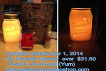 Fall/Winter 2014 Scentsy Fragrance and Velata Kitchen Essentials / Fragrance, Wickless candles, warmers, laundry products, gifts Kitchen appliances, food goodies, chocolate, cheese, fondue