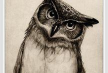 Pencil book sketches