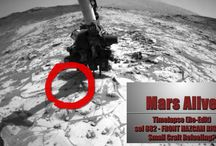 Mars Alive - Uncovering the Mars Cover-Ups - Videos / Uncovering the Mars Cover-Ups