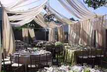 Backyard Wedding / by Jessica