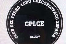 cplce