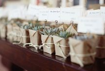 Wed favors