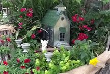 Fairy Gardens / All about Fairy Gardens - decorations, types of plants, interesting setups.
