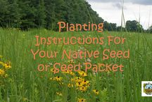 Helpful Hints and Tips / Ideas to help you create a successful native planting!