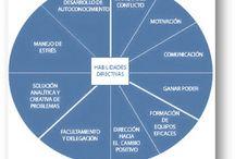 Habilidades Directivas / Habilidades Directivas: Gestión del Tiempo, Negociación, Comunicación efectiva, Creatividad, Resolución de Problemas y Toma de Decisiones, Venta, etc