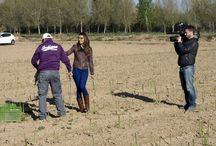 Visita de Telemadrid a la huerta de Aranjuez / Telemadrid para noticias del mediodía