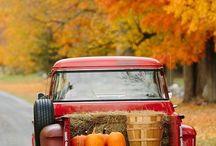 Seasons - Autumn/Fall
