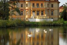 Zamki i palace