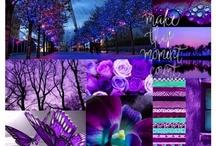 Everything purple ♥