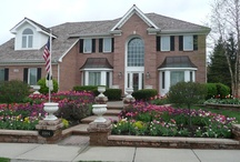 Garden - Curb Appeal / by Southern Guide to Life