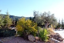 La casa del trueno / Fotos de nuestra casita, los jardines, la piscina, lo que te vas a encontrar cuando vengas a visitarnos.
