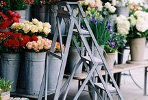 fleure paris