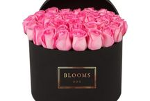 Floral Gifts and Flower Decor