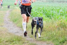 CANICROSS / Correr con perros, running with dogs