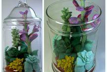 Plants and Terrariums / by Allana Vazquez