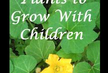 Homeschool - Gardening Units / by Tauna M (Proverbial Homemaker)