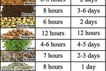 Sprouts, seeds and nuts - Idut, siemenet ja pähkinät