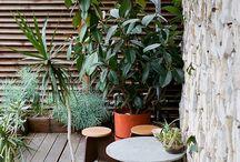 Växter inredning