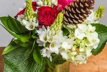 Christmas Flowers Auckland / Christmas flowers from Roses Florist Auckland, Christmas flowers, Christmas table decorations, Christmas cards,