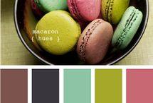 Colors / by Stephanie Cielinski