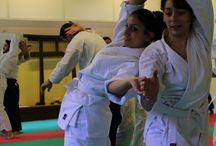 Dantai Aikido seminar aggiornamento Marzo 2014 Torino /  Dantai Aikido seminar aggiornamento Marzo 2014 Torino
