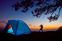 Bay Area Camping / The coolest campgrounds in the Bay!