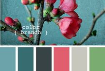color scheming. / by Stephanie Harvey