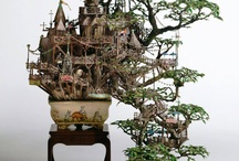 Potted plants  / by Mandy Dandy