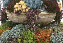 Gardens / Ogrody: duże, małe i mikro