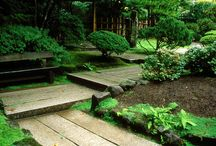 Japanese Shed & Garden