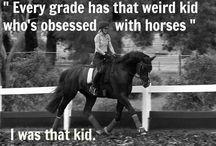 Horses / horses ate my life
