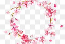 circulos florais