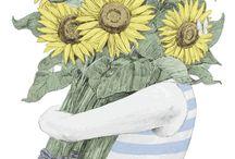 Girassóis  / Sunflower