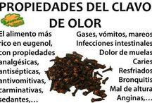 Botánica medicinal