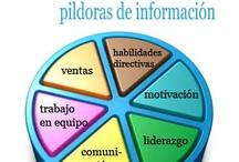 Blog habilidades directivas / Blog habilidades directivas desde otro punto de vista: motivación, ventas, trabajo en equipo y comunicación. http://competenciasdirectivas.wordpress.com