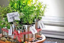 Chá-Bar #hortaquebrota / juntando ideias de decoração, comidinhas, bebidas, e tudo mais que puder agregar no chá-bar do casório DNA!  18 de junho, na #hortaquebrota!  uhuhuhu