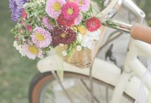 Bicycles and Flowers / by Kathryn (Kitty) Wenke