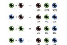 oog kleur