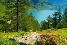 Swiss Alps / Bucket-list destination