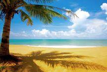 paradijs / hoe ik het paradijs zie