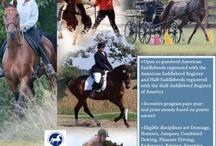 ASHA Programs / Join in on the fun!