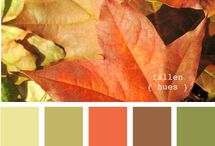 colouring leaves