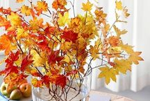 I LOVE FALL! / by Shannon Hensel