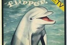 Flipper! King of the Sea!! / All things related to the 1960's television series, Flipper