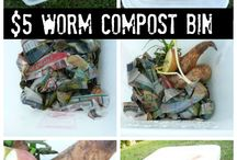 Worm composting / by Rachelle Hand